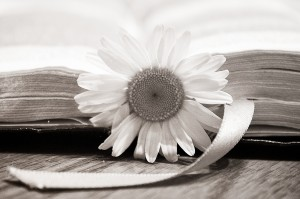 flower book black white